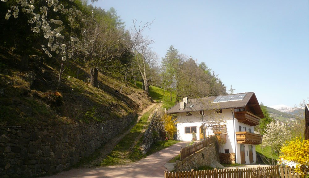 Farm holidays in South Tyrol: holiday apartments in Barbiano