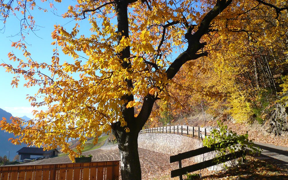 Herbsturlaub in Barbian